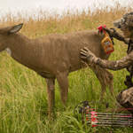 Melissa Bachman Spraying Decoy With Scent Killer