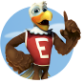 Eddie Eagle GunSafe® Program
